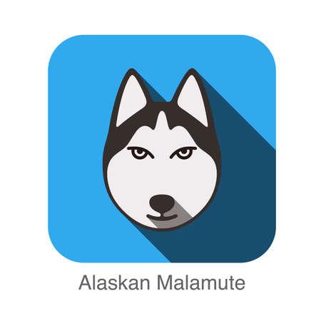 alaskabo: Alaskan Malamute animal face ui flat design Illustration
