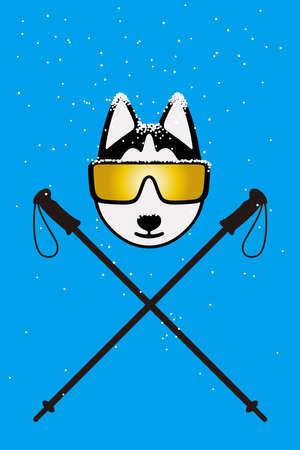alaskabo: Gentlemen dog wearing glasses like a snowman
