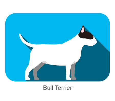 breed: Bull Terrier dog breed flat icon design