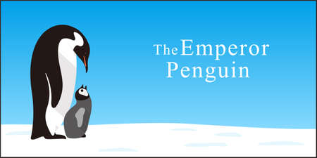 emperor: Emperor Penguin - father and son