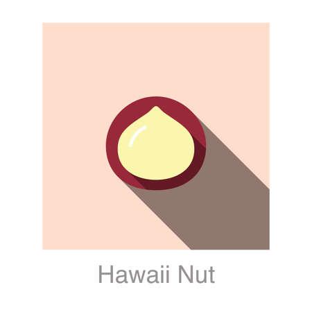 nut: Hawaii nut   flat icon   Illustration