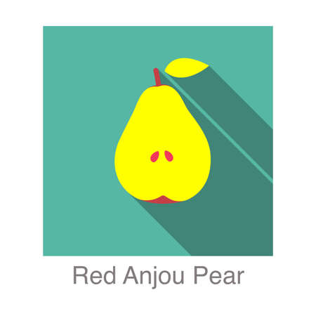 anjou: Red Anjou Pear  flat icon  Vectores
