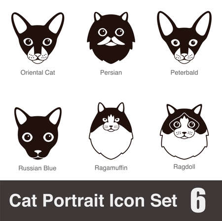 breed: Cat breed face cartoon flat icon series Illustration