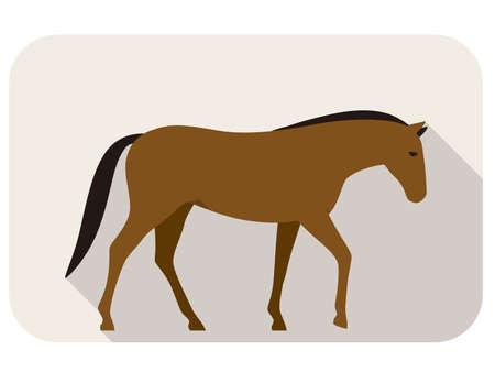 animal: animal horse series, standing, vector