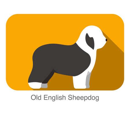 sheepdog: Old English Sheepdog breed flat icon design, vector illustration