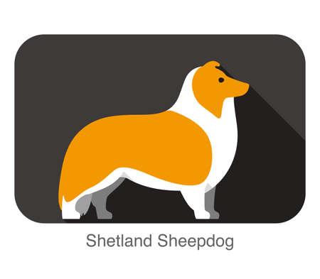 shetland: Shetland Sheepdog dog breed flat icon design,  illustration