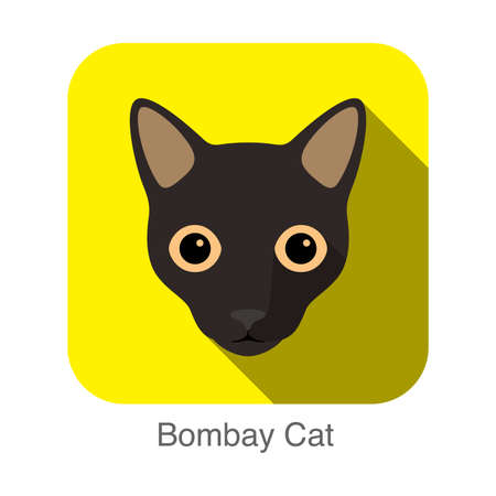Bombay Cat, Cat breed face cartoon flat icon design