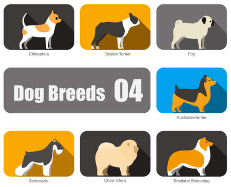 sheepdog: Dog breeds, standing on the ground, side,colors,  illustration, dog cartoon image series