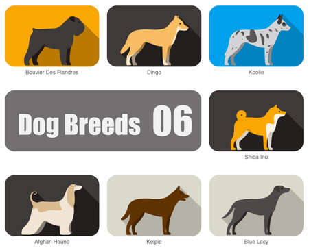 kelpie: Dog breeds, standing on the ground, side,colors,  illustration, dog cartoon image series