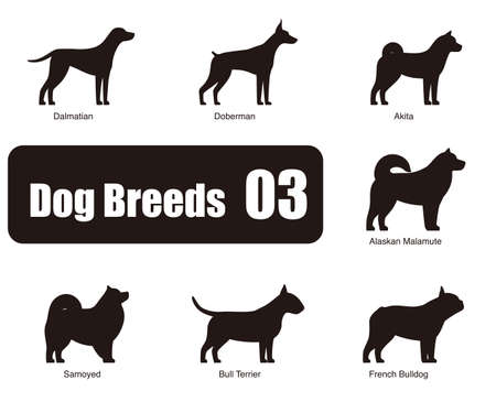 alaskan: Dog breeds, standing on the ground, side,silhouette, black and white,  illustration, dog cartoon image series