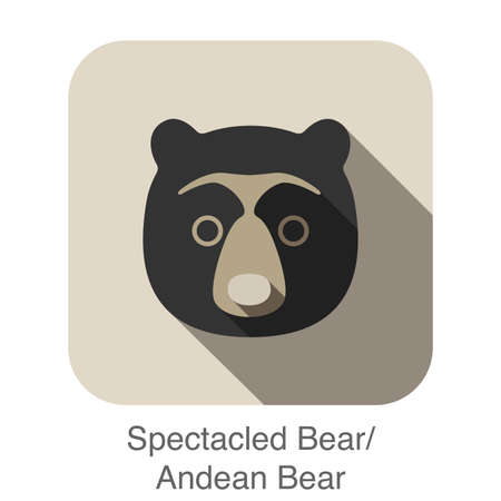 spectacled: Spectacled bear face flat icon design. Animal icons series. Illustration