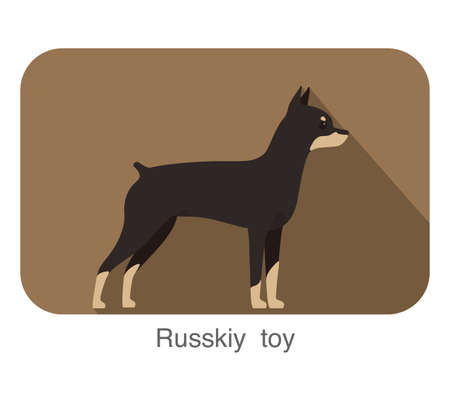 russkiy: Russkiy toy terrier standing and watching, vector illustration