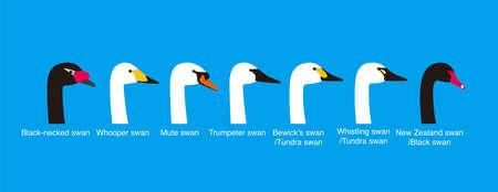 set of swan head vector icons  vecor illustration