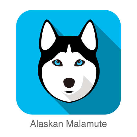 Alaskan Malamute Dog face portrait flat icon design, vector illustration