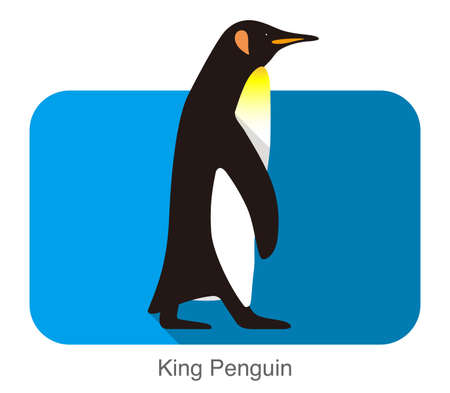 King Penguin walking, Penguin seed series, vector illustration Illustration