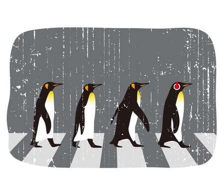 king penguins: King Penguin walking, Penguin seed series, vector illustration Illustration