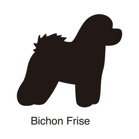 Bichon Frise dog silhouette, side view, vector illustration