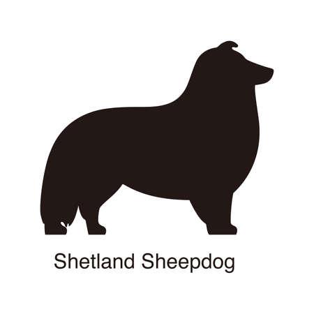 shetland: Shetland Sheepdog dog silhouette, side view, vector illustration Illustration