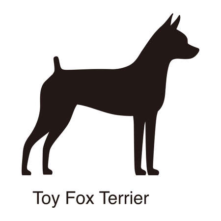 Toy Fox Terrier dog silhouette, side view, vector illustration