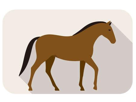 animal horse series flat icon, walking  vector illustration Illustration