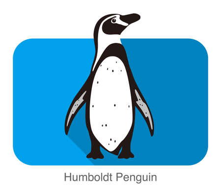 antarctica: Humboldt penguin standing flat icon  vector illustration