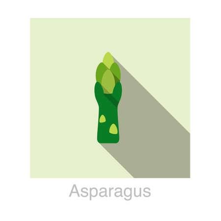 officinalis: Asparagus Vegetables food flat icon  vector illustration Illustration