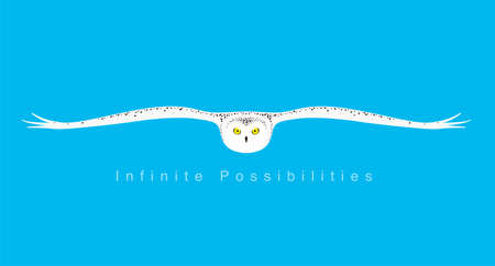owl expanding wings, flying to you, flat icon simple design illustration