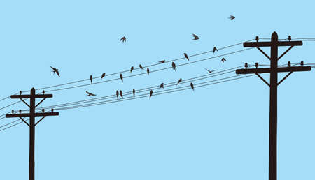 flock swallows on the electric wire illustration