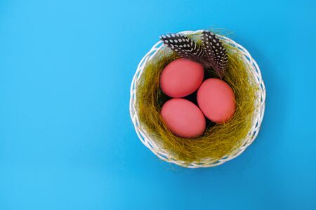 Pink easter eggs with feathers in a nest, on blue background