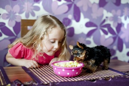 Little girl and her puppy are eating snack together in the kitchen photo
