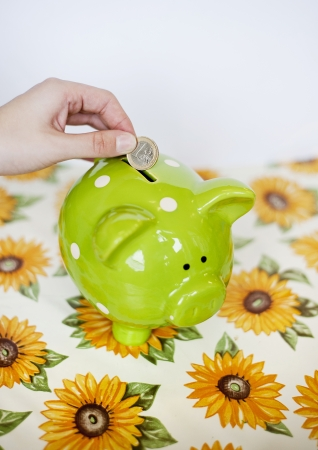 Dropping a euro into a money pig box Stock Photo - 18608654