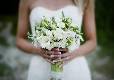 Fleurs Banque d'images - 20609083