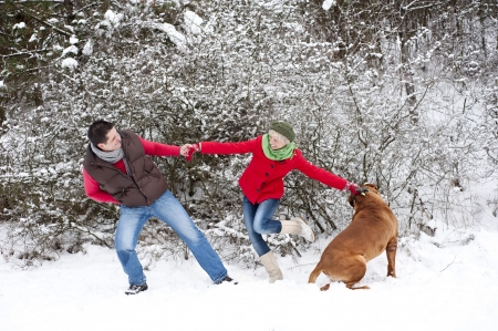 Woman and man are having fun with dog in winter snowy countryside photo