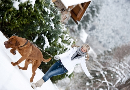 big dog: Blonde girl is having fun with her big brown dog in snow Stock Photo