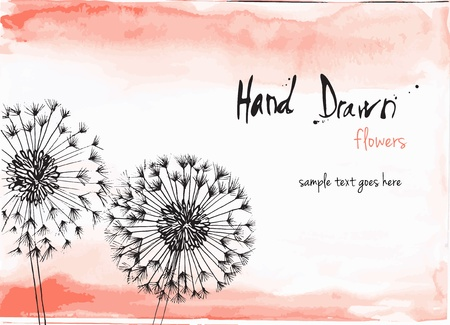 Hand drawn vector illustration of flowers with space for copy text  Vector