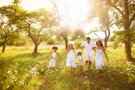 meadow: Happy family
