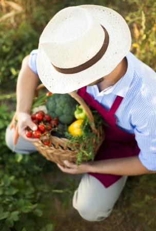 tomate de arbol: Jardinero de sexo masculino joven que trabaja en el jardín