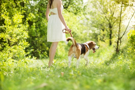beagle: Portrait of a woman with her beautiful dog outdoors Stock Photo