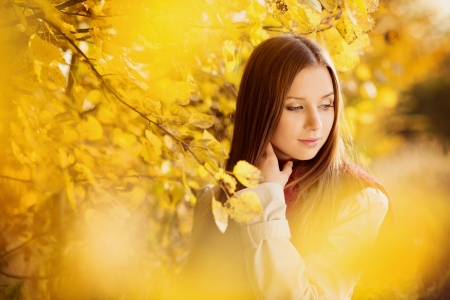 Portrait of beautiful girl in autumn park with yellow leaves
