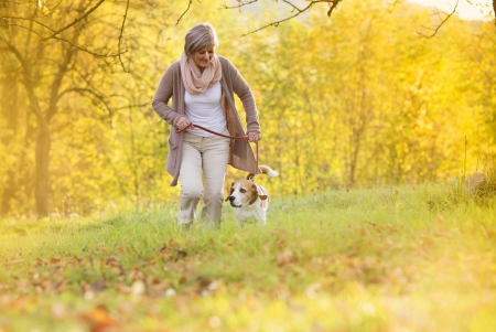 Senior woman walking her beagle dog in countryside