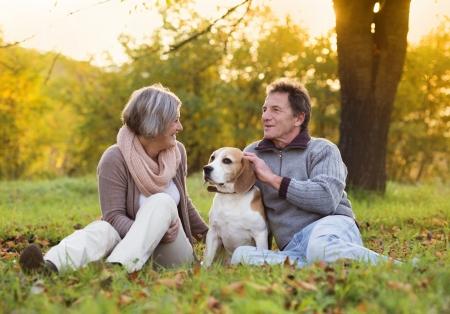 one senior adult woman: Pares mayores que recorren su perro beagle en oto�o campo