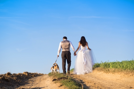 Bride and groom walk their beagle dog in the green field  photo
