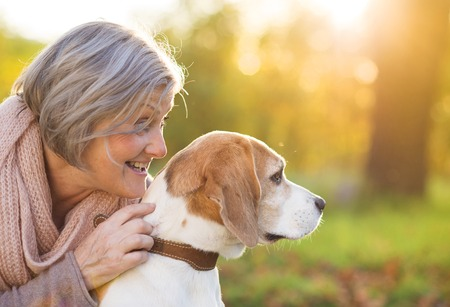 Senior woman hugs her beagle dog in countryside Stock Photo