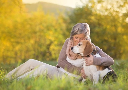 beagle: Senior woman hugs her beagle dog in countryside Stock Photo