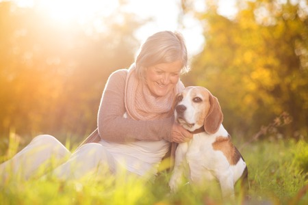 Senior woman hugs her beagle dog in countryside Banco de Imagens