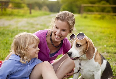 Family and funny dog with glasses  photo