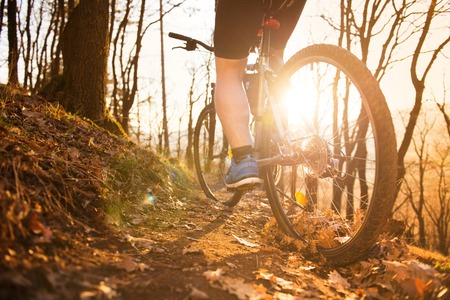 Cyclist man riding mountain bike on outdoor trail in sunny meadow photo