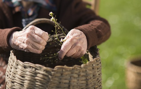 Detail of old woman hands working Stock Photo - 27501745