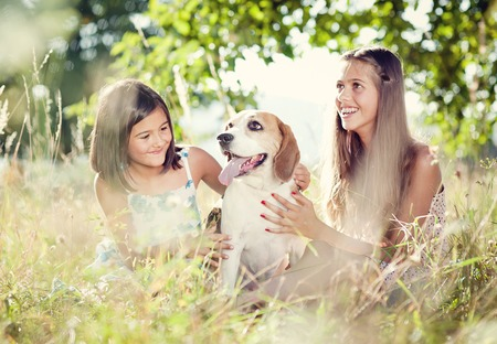 Two sisters playing with their beagle dog in green park  photo