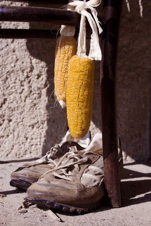 Close-up of dried yellow corn hanging on chair outside photo
